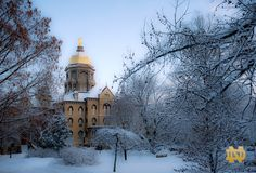 Notre Dame golden dome in the snow.  So pretty.