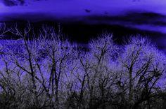 Dark Horizon 8x10 metallic print by MemoriesByTessa on Etsy, $60.00  Photograph by Tessa Fritzler  copyright 2013