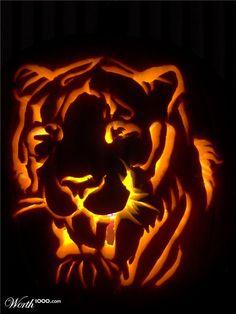 1000 Images About Jack O 39 Lanterns On Pinterest Pumpkin