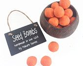 Carrot, Herb or Flower Seed Bomb Party Favors - 12 Orange Seed Bombs Boy & Girl Kids Birthday Party Favor Double as Orange Table Decorations