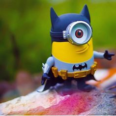 A fun image sharing community. Explore amazing art and photography and share your own visual inspiration! Batman Minion, Minions, Minion Painting, Image Sharing, Painted Rocks, Amazing Art, Sculptures, Instagram, Cute