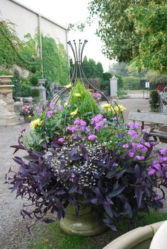 Love the form of this pot with purples and yellows