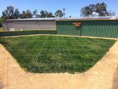 Backyard Baseball, Wiffle Ball, Fields, Outdoor Decor, Home, Ad Home, Homes, Haus, Golf Ball