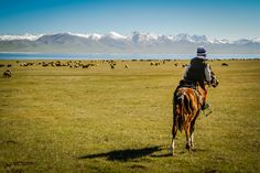 My favorite destination in Kyrgyzstan: Song Kul lake - nature and peace. Check the post for many more pictures! Here a yound nomad riding after the animals