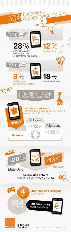 2014 : L'année du e-commerce mobile en France