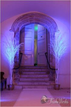 Entrance ways are always important. By using some simple props an area can be transformed. These light up white twig trees are perfect for the winter wonderland theme.