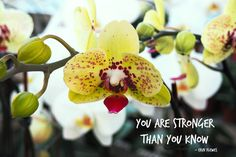 """You Are Strong"" Yellow Inspirational Nature Artwork Gift Nature Artwork, Nature Prints, Inspirational Artwork, Inspirational Gifts, Yellow Orchid, Stronger Than You, You Are Strong, Green Leaves, Creative Art"