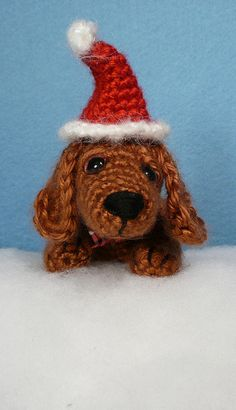 Dudley the Dachshund is ready for Christmas