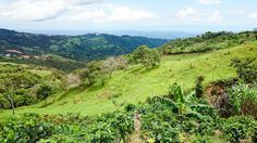 Run Your U.S. Business From Costa Rica's Picturesque Highlands