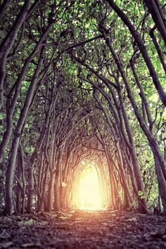 there's a light at the end of this tunnel..