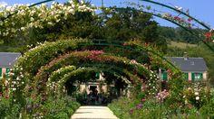Claude Monet puutarha