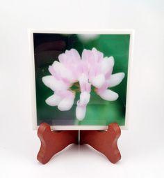 Little Clover Flower Handmade Photo Coaster FI0263 by DovesClosetInc on Etsy