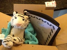 Special Delivery! Have a class pet arrive by mail (pretend) during the first week with a writing journal