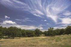 Grape Creek (Texas): Post oak and live oak flourish in this Hill Country setting, which is available in its entirety or in smaller tracts. Conveniently located between Fredericksburg and Comfort. [Listed with Texas Ranches for Sale]