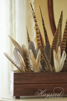 Simple Feather Arrangements by Hayseed Homemakin'