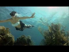 GoPro HD: Shark Riders - Introducing GoPro's New Dive Housing.