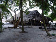 suriname, Indian arowak Village Matta.