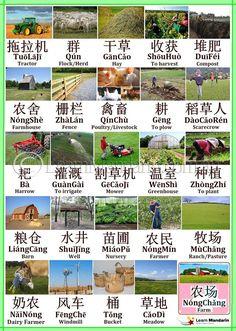 Basic Chinese, How To Speak Chinese, Chinese Words, Chinese English, Learn Chinese, Chinese Places, Write Chinese Characters, English To Vietnamese, Chinese Pinyin