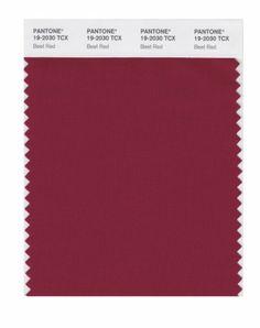 PANTONE 19-2030 TCX - Beet Red