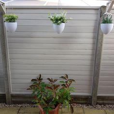 Back Garden Design, Backyard Garden Design, Fence Design, Grey Fence Paint, Fence Paint Colours, Small Back Gardens, Small Courtyard Gardens, Decking Colours Ideas, Gardens