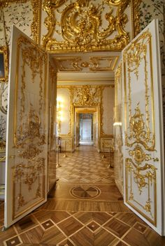 The Palace of Catherine, Pushkin, Russia. Baroque Architecture, Ancient Architecture, Beautiful Architecture, Architecture Design, Palace Interior, Interior And Exterior, Versailles, Gold Aesthetic, Fontainebleau