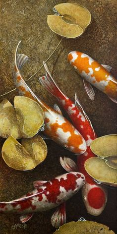 """Nothing Better to Do,"" by Terry Gilecki Pretty Fish, Beautiful Fish, Aquariums, Fish Chart, Koi Painting, Goldfish Pond, Koi Art, Carpe Koi, Watercolor Fish"