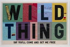 Wild Thing Say You'll