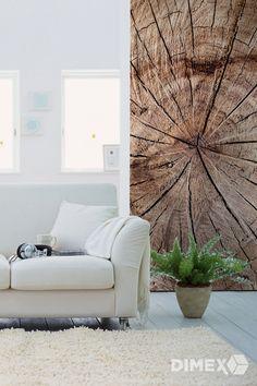 Letokruhy ako fototapeta na stenu | DIMEX