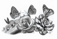 10  Beautiful Butterfly Drawings for Inspiration, http://hative.com/butterfly-pencil-drawings/,