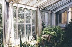 The Palm House Botanical Gardens Copenhagen © Birgitte Brøndsted