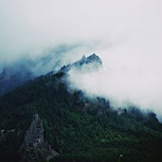 Film + Grain: Mountain Mist by Leah Flores