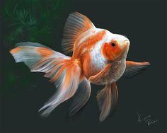 Goldfish by ~KoraRin on deviantART