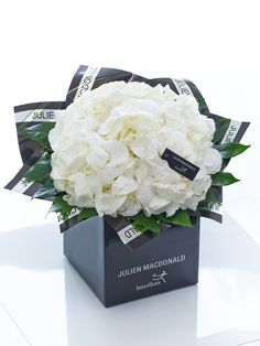 Julien Macdonald Sophisticated White Hydrangea Hand-tied - Interflora