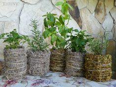 diy moss & twine flowerpot covers