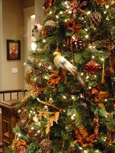 I love all white lights on a tree. Muted browns & rust & red and gold. The bird in the middle is perfect. Fabulous red glass ornament, love the gold & orange leaves & pine cones. Stunning!