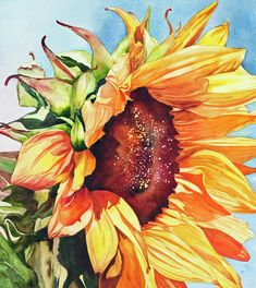 Fine art prints Sunflower Painting - Tournesol by Diane Fujimoto Sunflower Art, Watercolor Sunflower, Watercolor Flowers, Watercolor Paintings, Sunflower Paintings, Watercolors, Paintings Famous, Painting & Drawing, Art Drawings