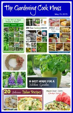 This week's issue of the Gardening Cook News is out.  Herb Gardening, Wreath Tutorial, new recipes and more.  You can read it as well as past issues and sign up here:  http://us10.campaign-archive2.com/?u=5ad38f20e2ddfde66859d1902&id=aa454a9dbe