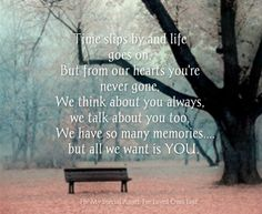 It is so hard some days to see life going by, surviving another day without my son by my side.