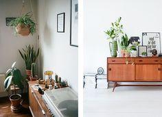 deco-plantes-interieur6