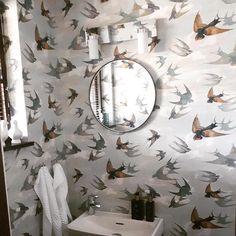 ideas for bird wallpaper hallway bedrooms Bird Wallpaper Bedroom, Animal Wallpaper, Wall Wallpaper, Designers Guild Wallpaper, Designer Wallpaper, Fantastic Wallpapers, Black And White Birds, Bird Theme, Simple Bird Tattoo