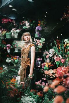 Wandering through a flower shop Love Flowers, My Flower, Beautiful Flowers, Flower Bar, Cactus Flower, Exotic Flowers, Purple Flowers, Spring Flowers, Couture