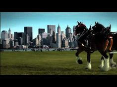 9/11 Budweiser Clydesdale's Tribute  This commercial has been played once in its history. The Anheuser-Busch Brewing Company aired this commercial during the 2002 Super Bowl, so as not to make any financial benefit from its airing.     God Bless America.