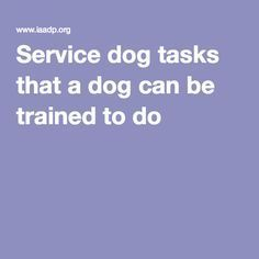 Service dog tasks that a dog can be trained to do