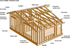 Wood glossary and images - very useful!