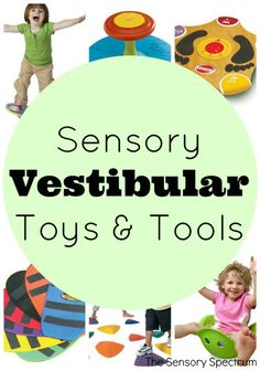 Sensory Vestibular Toys & Tools | The Jenny Evolution. Spooner board. Teeter tottering again. Gonga river stones in playroom.