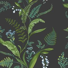 Cembra by Albany - Navy : Wallpaper Direct Green Floral Wallpaper, Botanical Wallpaper, Striped Wallpaper, Charcoal Wallpaper, Green Dining Room, Dining Rooms, Up House, Bathroom Wallpaper, Wallpaper Online