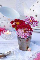 Vase mit zweifarbigen Dahlienblüten (Bicolor) auf Spitzendecken und Teegeschirr im Hintergrund