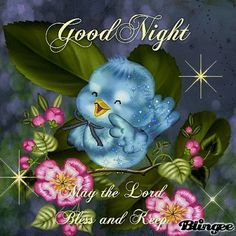 ❤️From my friend Doreen ~ Good Night Lil Bluebird. Sweet dreams and May God Bless You and Your Family