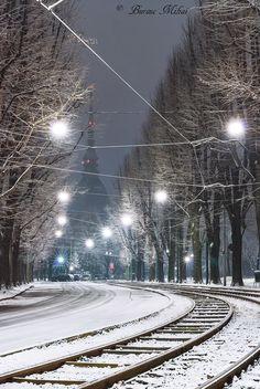 Torino Viale 1°Maggio by Bursuc Mihai