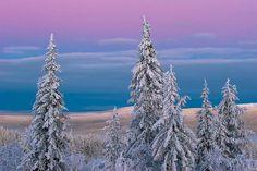 Finland Winter   finland   Tumblr   winter